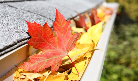 fall weather will cause gutter blockage