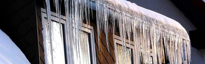ned stevens special winter savings event