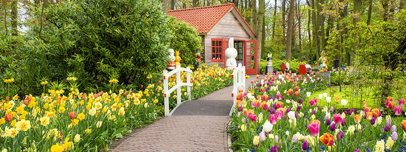 Get your home ready for summer with these tips from Ned Stevens.