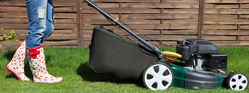 Check out our take on ways to make your lawn greener than the Joneses'