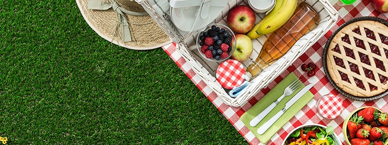 Ready for an excellent picnic? These tips will help you make an ordinary picnic into a memorable experience!