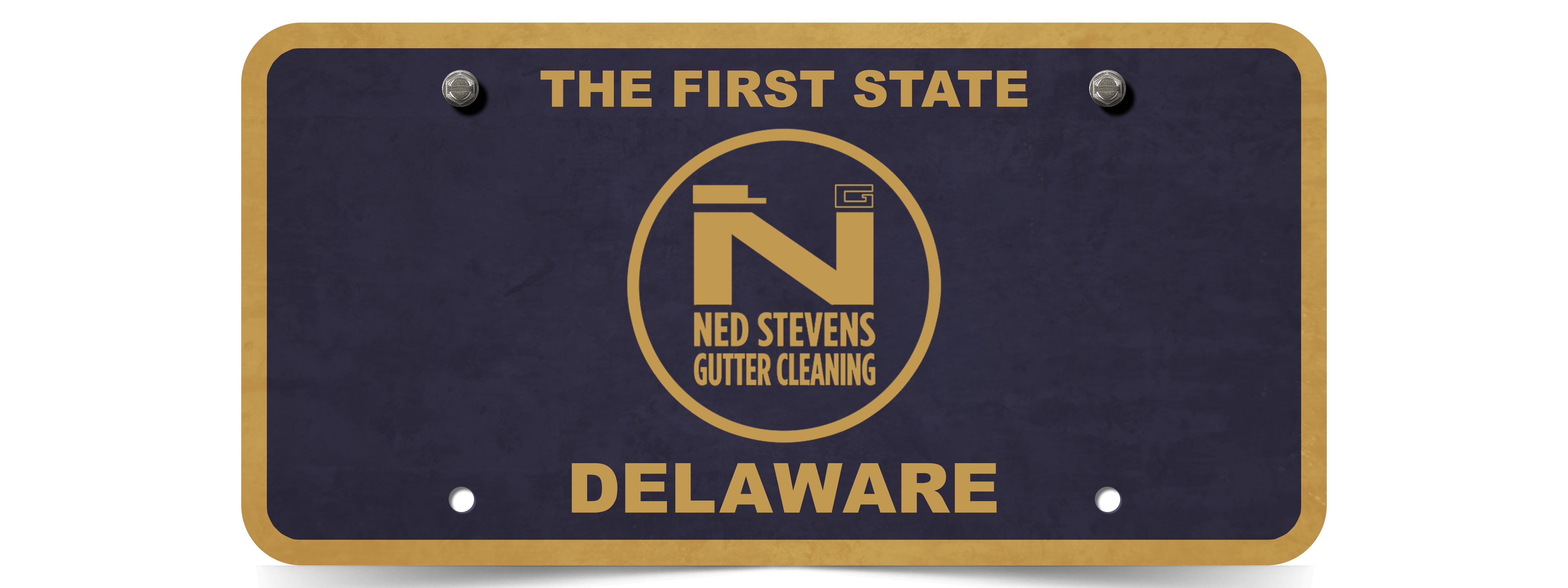 Ned Stevens Brings Gutter Cleaning to Delaware!