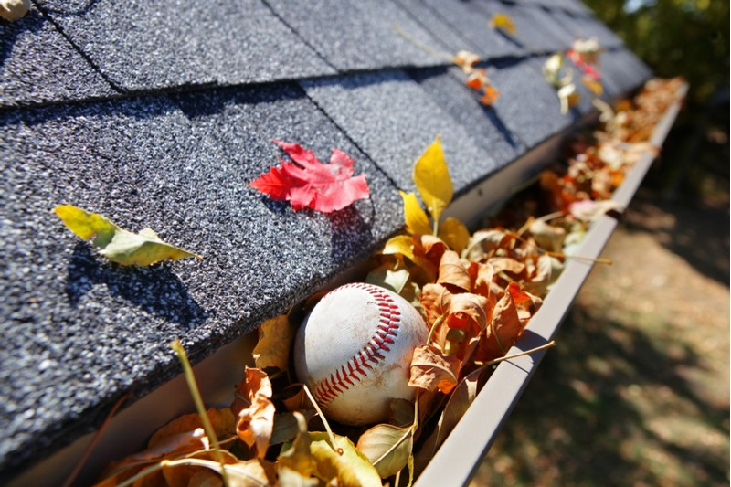 summer gutters clogged with leaves and a baseball