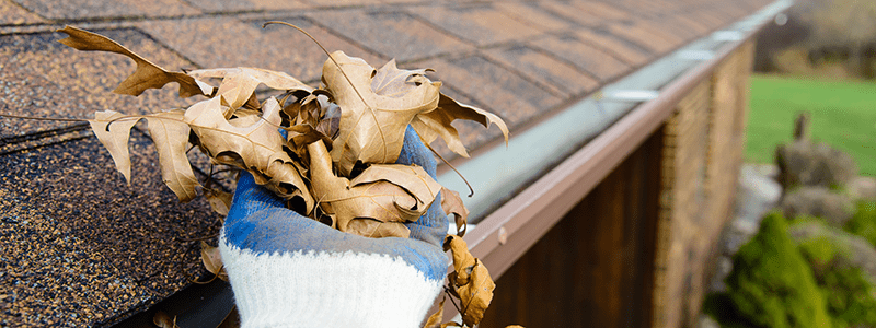gutter cleaning technician hand reaching into gutter to remove leaves using gloved hand