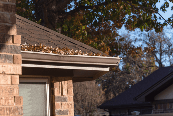 autumn image of clogged gutter