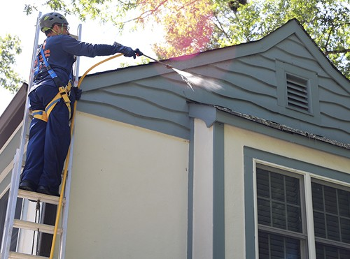 Ned Stevens Gutter Cleaning and Home Services Roof Cleaning
